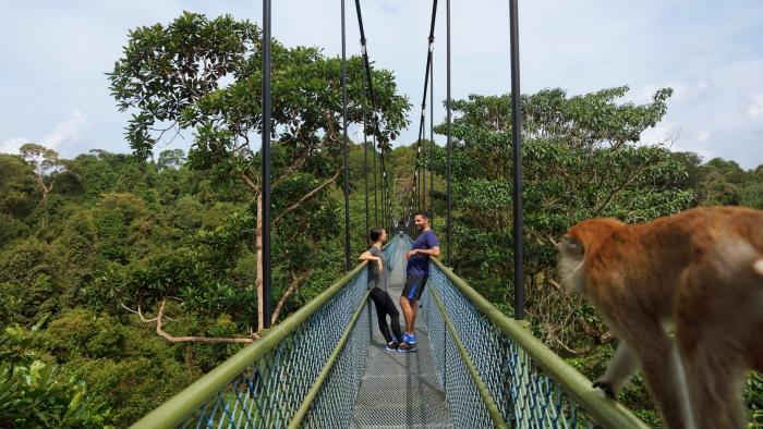 Adventures in Singapore