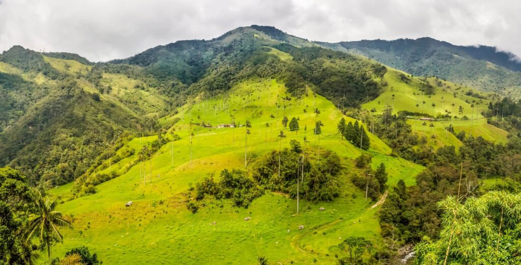Best hikes in south America, Cocora Valley, Colombia