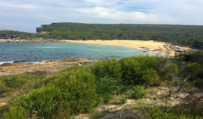 Day hikes Sydney