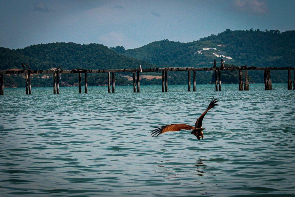 Langkawi Diving, Malaysia