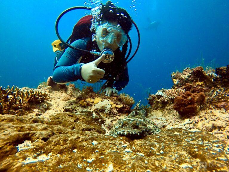 Mabul diving, Malaysia