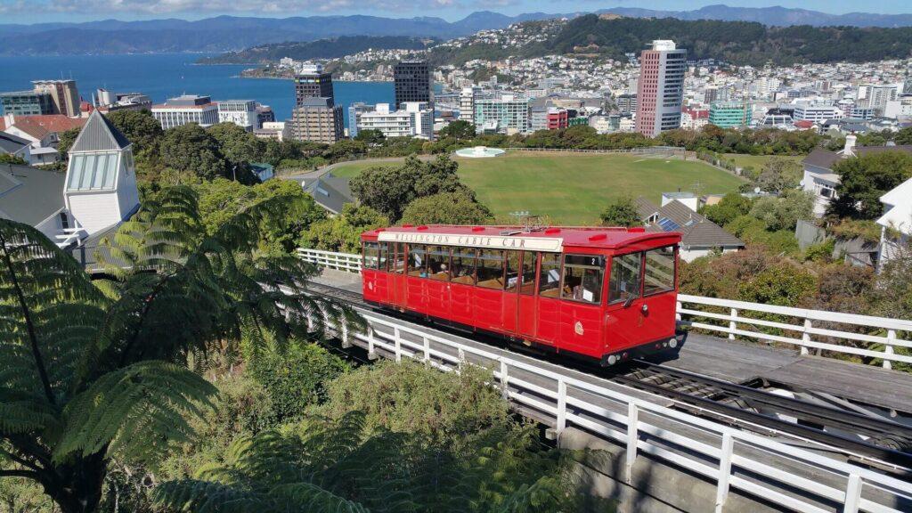 4 weeks in New Zealand