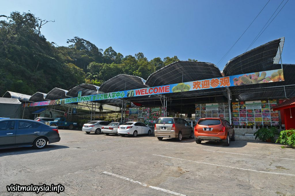 Places to visit in Cameron Highlands